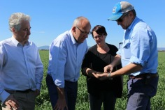 Adam Searle with Labor Leader Luke Foley and Shadow Minister for the Environment Penny Sharpe on the Liverpool Plains to talk with local property owners and farmers about the damaging effect the Watermark open cut mine will have on the Plains.